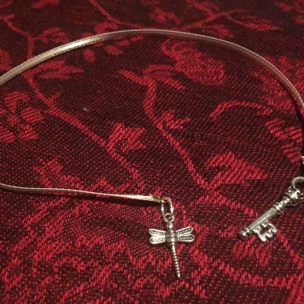 dragonflybookmark